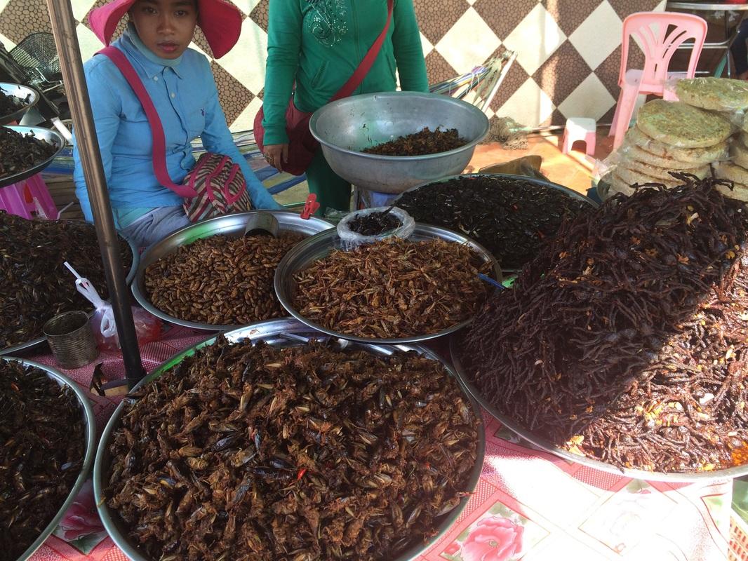 Bug market, Cambodia (snack time!)