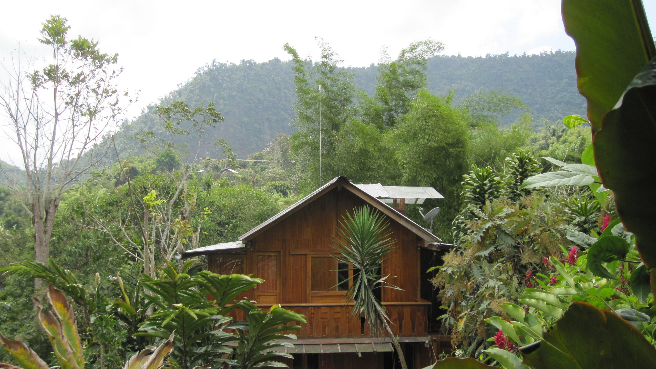 Mindo, in the cloud forest