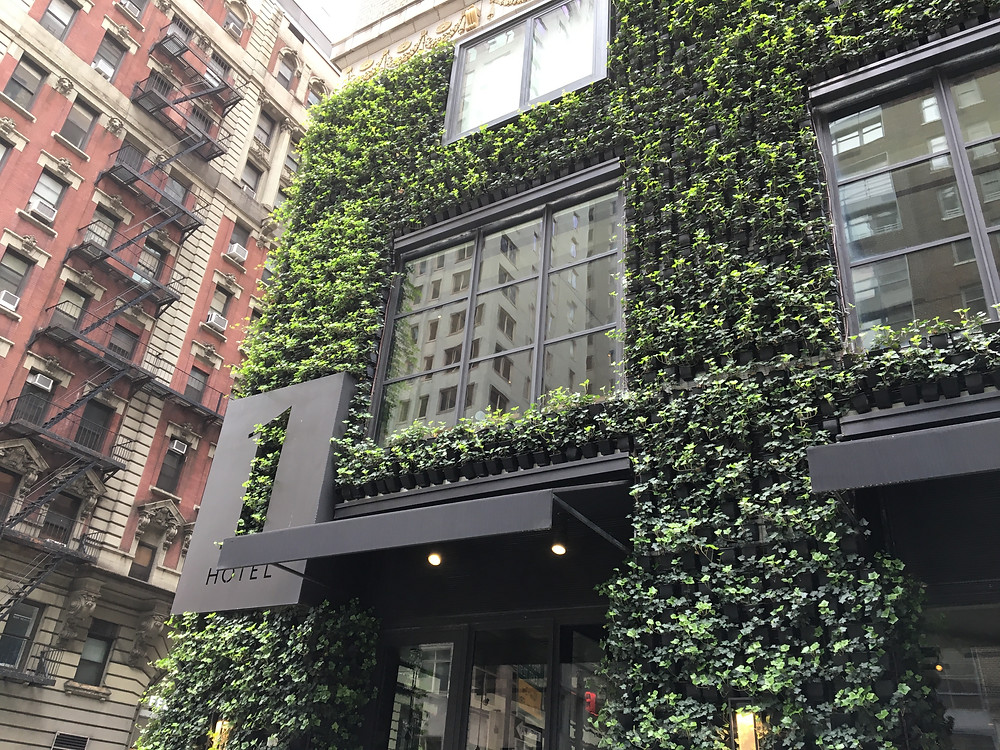 The 1 Hotel in NYC