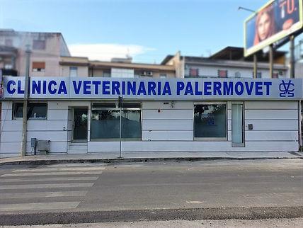 clinica%20palermovet%20giorno_edited.jpg