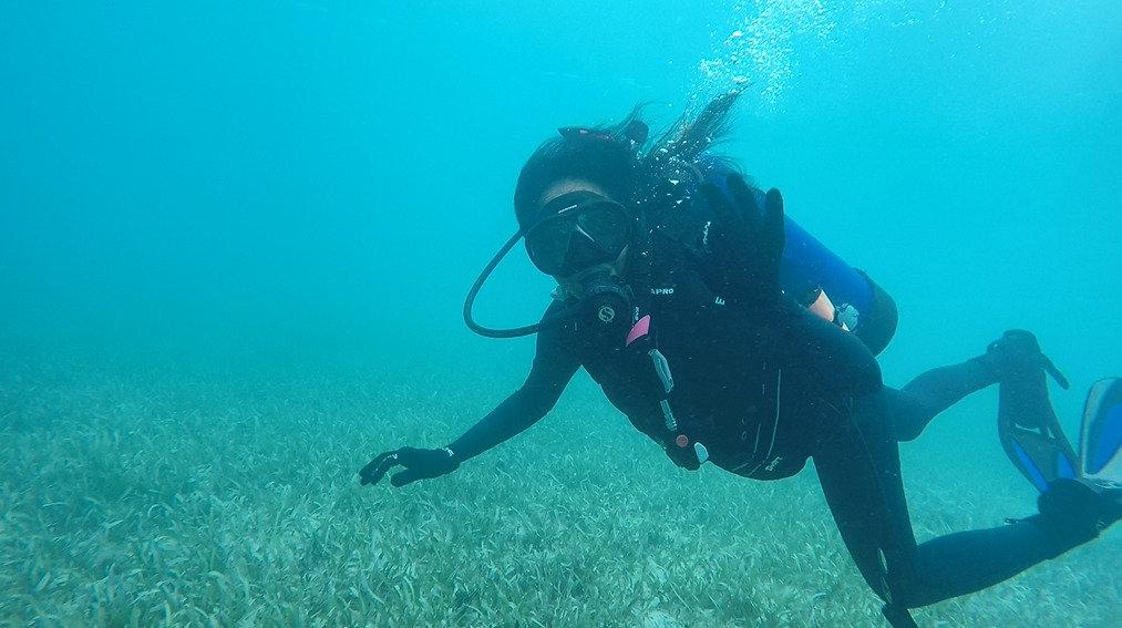 Private Dive