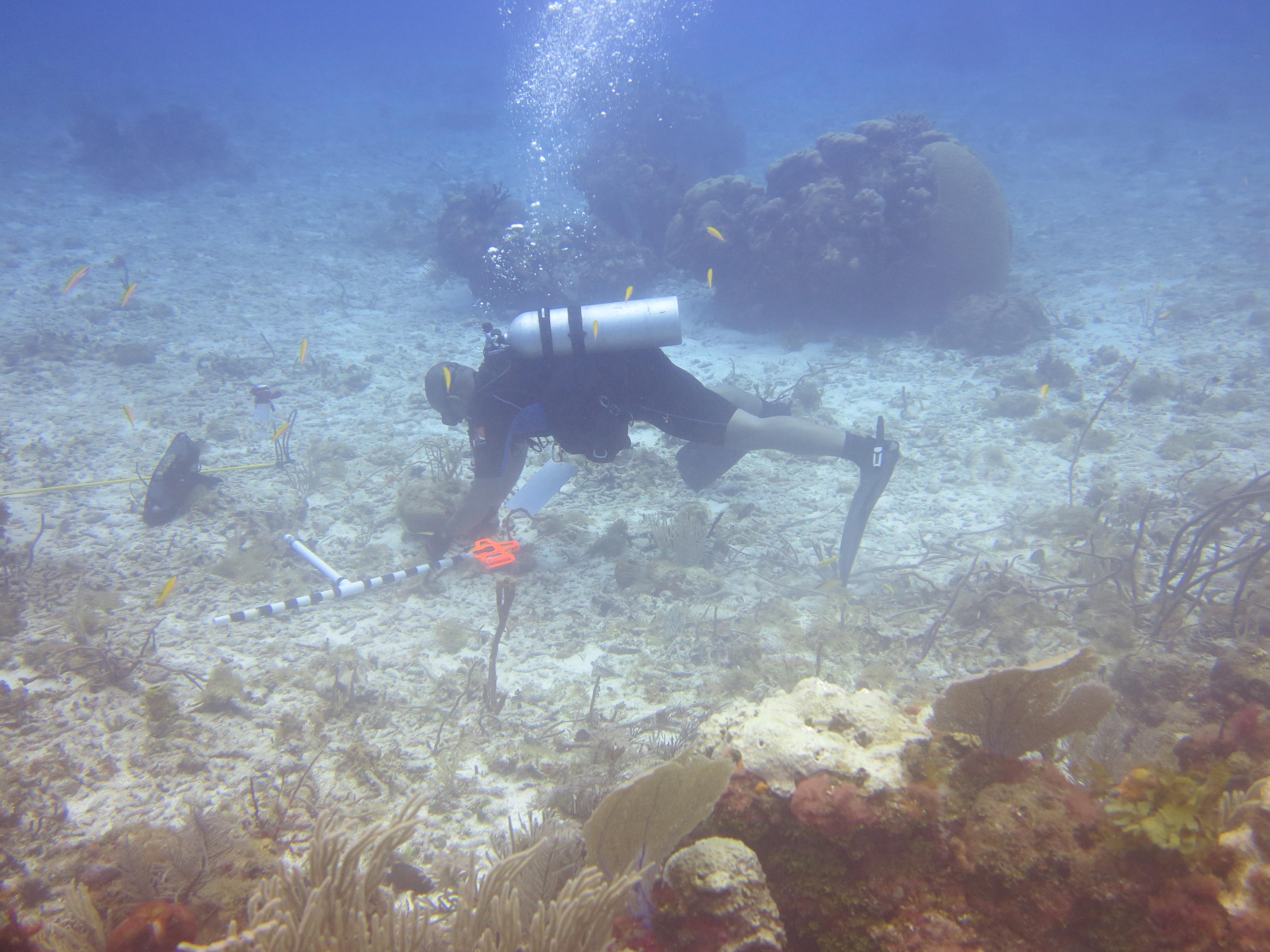buoy44 - 21.5 (6).JPG