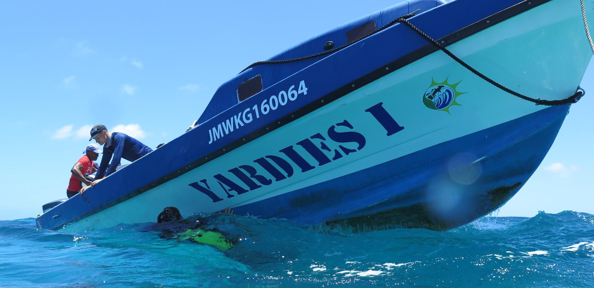 Yardies 1 Beautiful 2.JPG