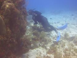 Winston Kerr at Winston Rock Reef