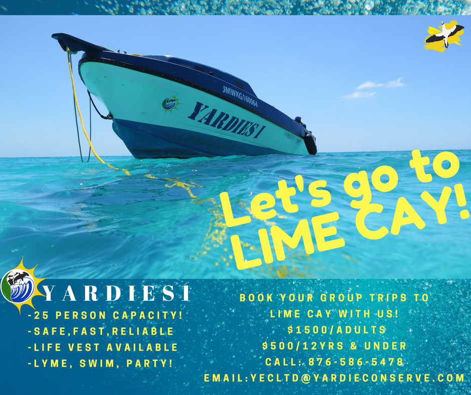 Yardies 1 - Lime Cay Trips.png