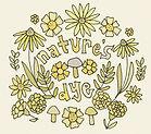 natures dye logo 2.jpg
