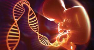 vizit-k-genetiku-vo-vremya-beremennosti