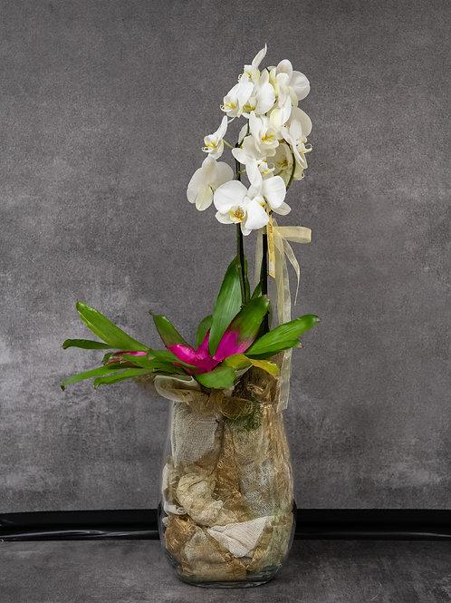 Composizione fiori mista