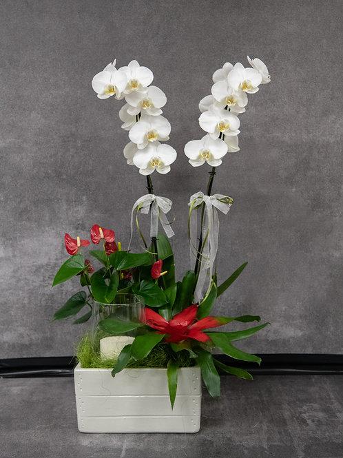 Composizione fiori mista con candela