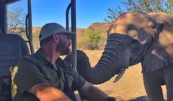 Close Encounters - Desert Elephant
