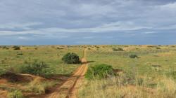 Kgalagadi National Park