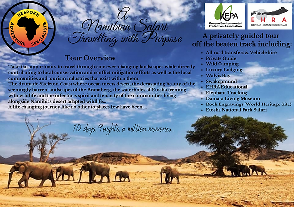 A Namibian Safari Travelling with Purpose.png