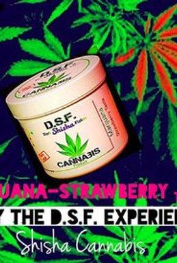 Chicha Gout Marijuana Strawberry CBD