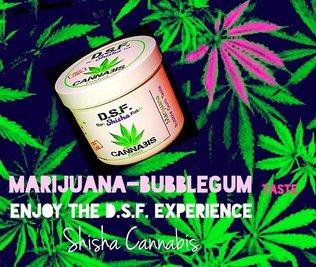 Chicha Gout Marijuana Bubble Gum CBD
