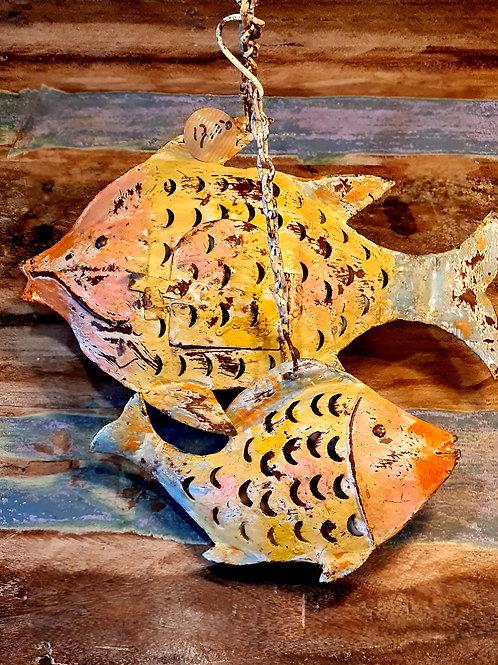 Vissen 3 maten