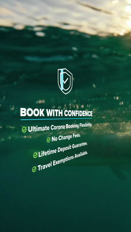 Corona Reassurance Social Media Video Feed ad