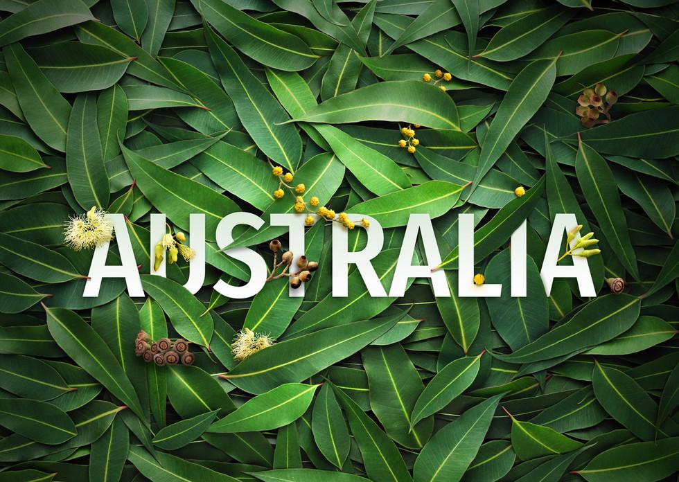 """Australia """"flora"""" title concept"""