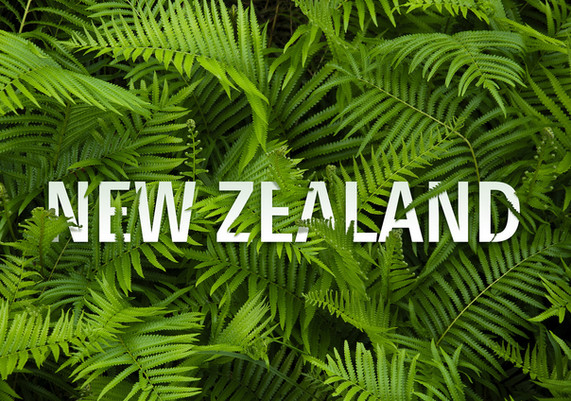 "New Zealand""flora"" title concept"