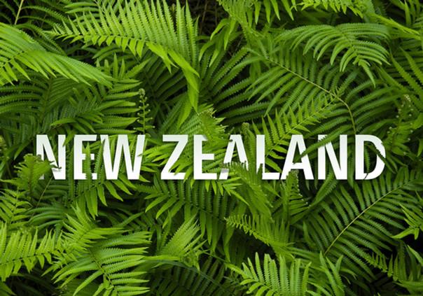 "New Zealand""flora"" title concept"