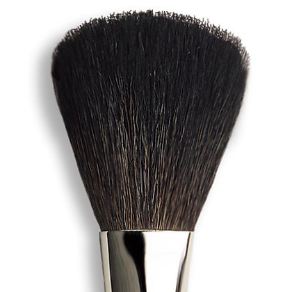 make-up brush F1