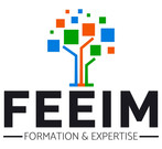 Logo FEEIM formations Toulouse