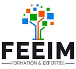 feeim logo