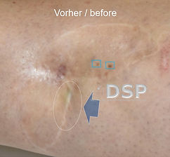 DSP HP-paME VN 0015-01.jpg