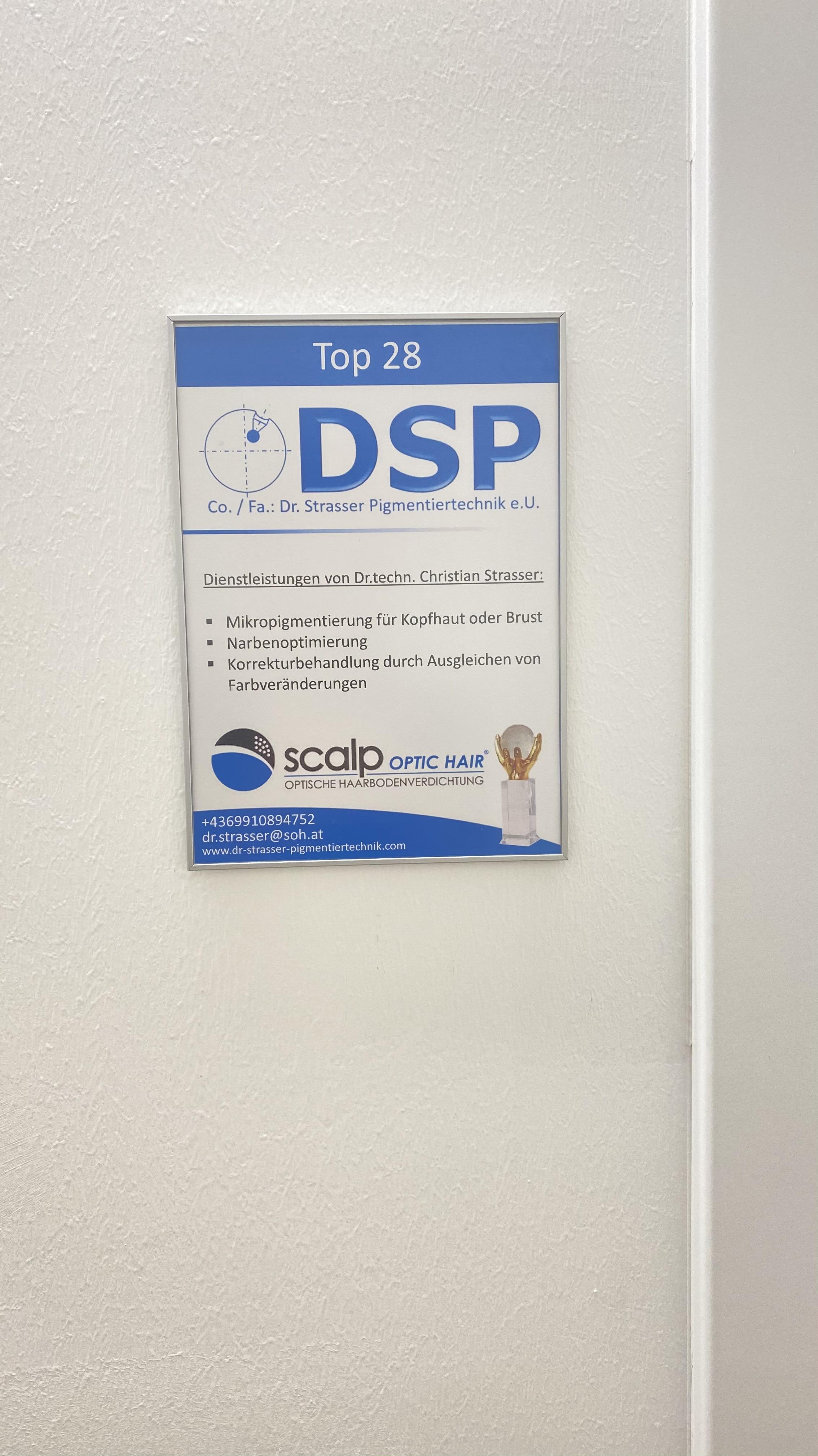 Dienstleistungen der Fa. DSP
