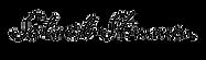 SchreibStimme_logo_13052021_edited_edited.png