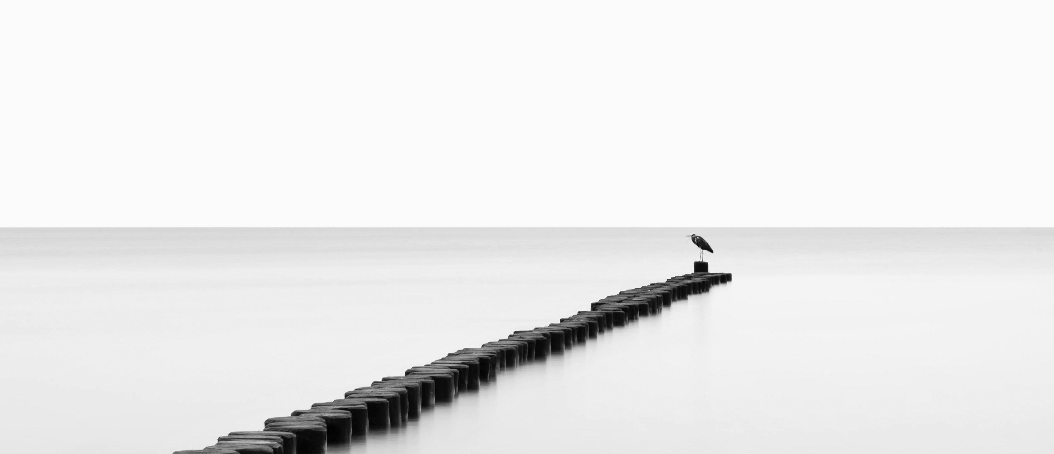 minimalismusundvogel3_webseite