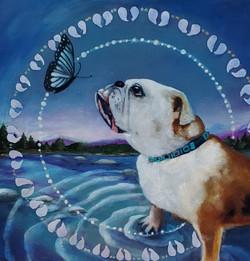 Bella & the Butterfly- Serenity Meg