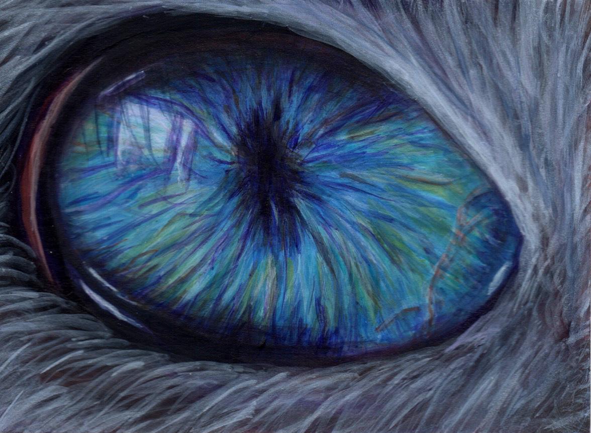Cat's Eye  - Serenity Meg