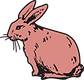 RABBIT RED.png