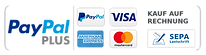 paypalplus.png