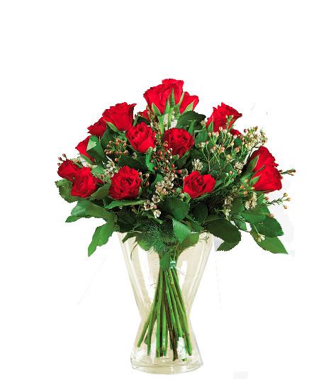 12 rose rosse € 95,00