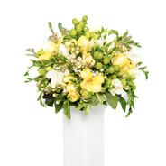 Bouquet fresie gialle e bianche € 50,00