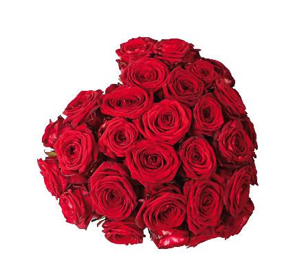 Cuore rose rosse € 95,00