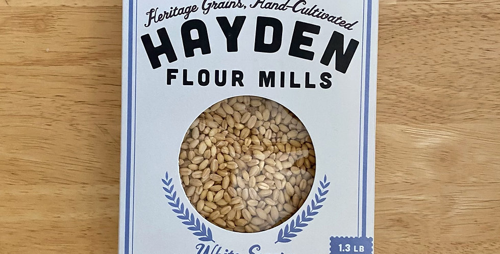 Hayden Wheat Berries