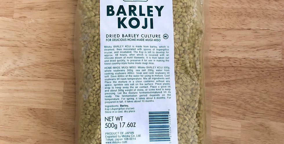 Barley Koji
