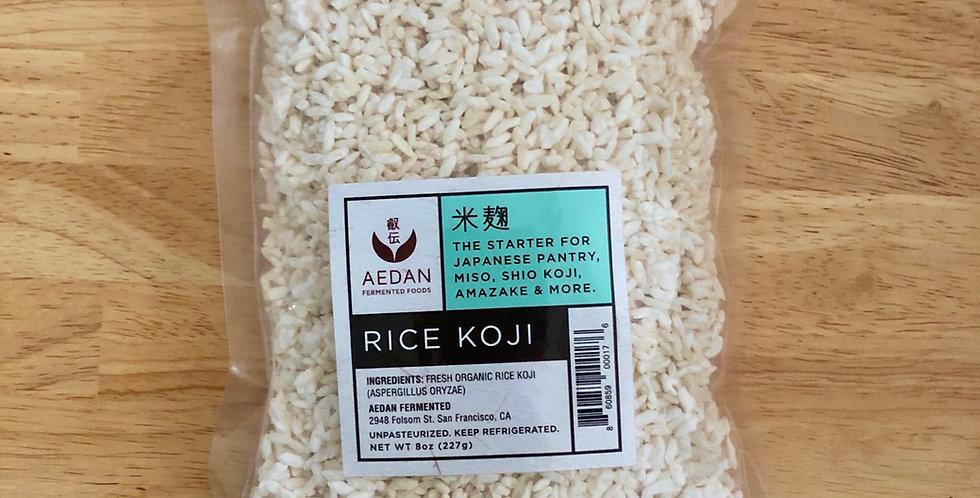 Aedan Rice Koji