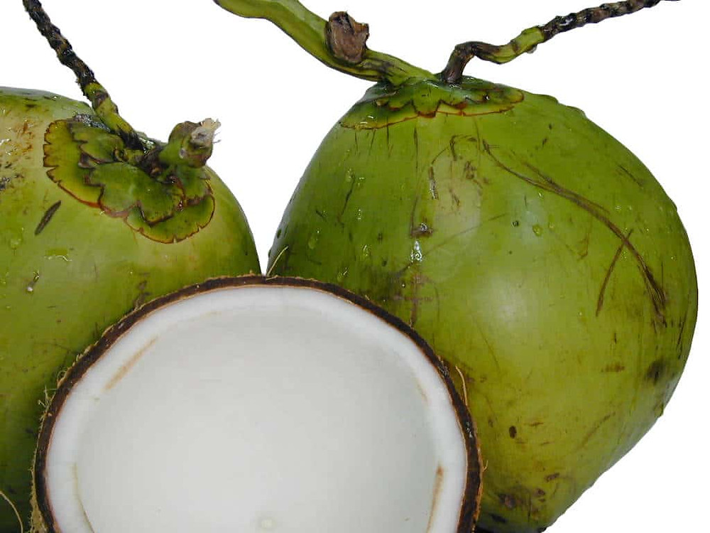 two whole green coconuts and one opened mature coconut with the white interior showing