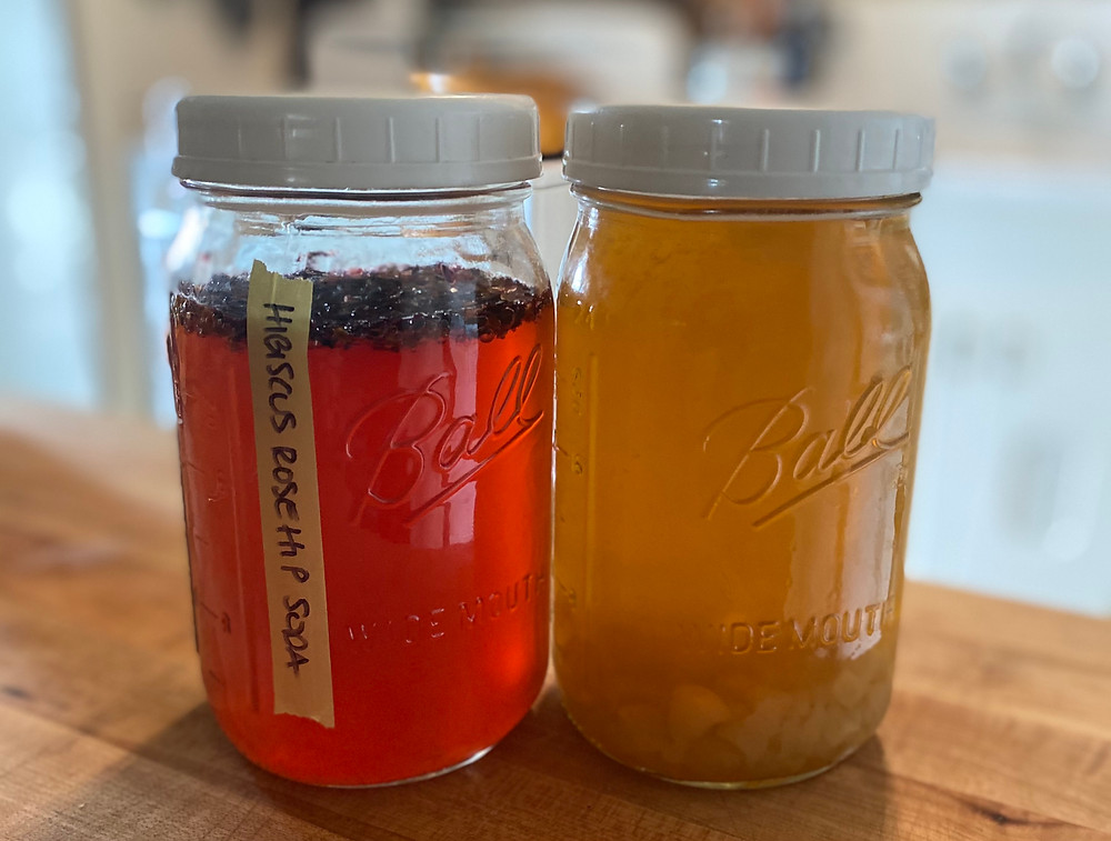 two quart jars of water kefir, the one on the left is infusing with hibiscus and rose hips, the one on the right is fermenting with the kefir grains