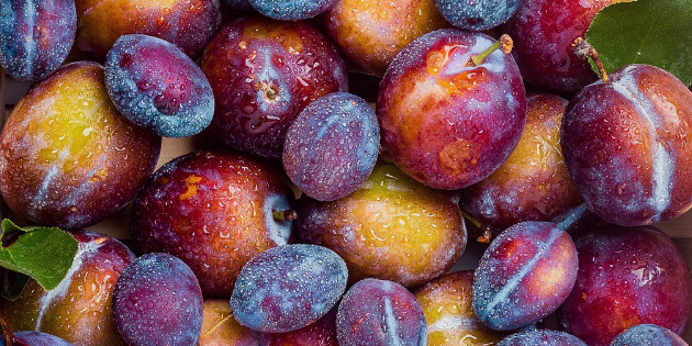 Fresh farmer's market plums