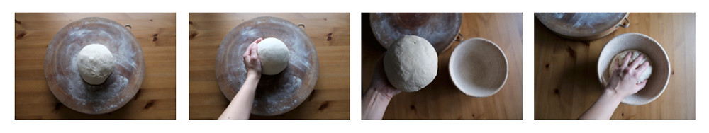 4 photos illustrating rounding the dough and transferring it to a proofing basket