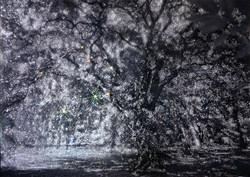 輝樹~輝き続ける樹木 Photo:堤 一夫 氏