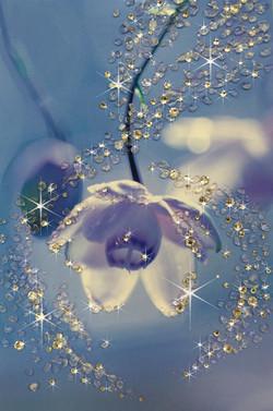 瑠璃色の幻想
