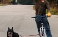 Four-time Iditarod winner tries out the Xplora