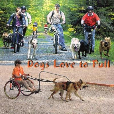 DVD - Dogs love to Pull by Daphne Lewis
