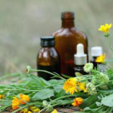 Initial Herbal Medicine Consultation