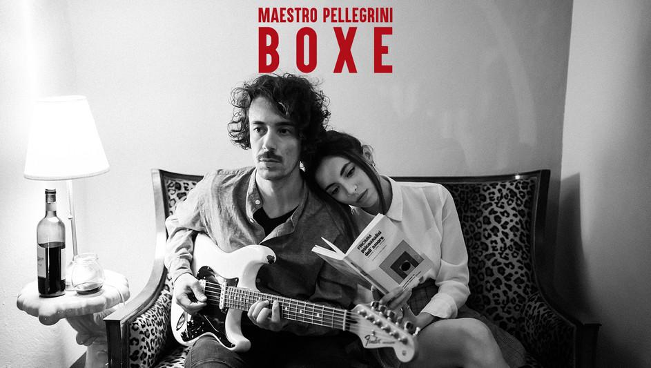 Maestro Pellegrini Boxe